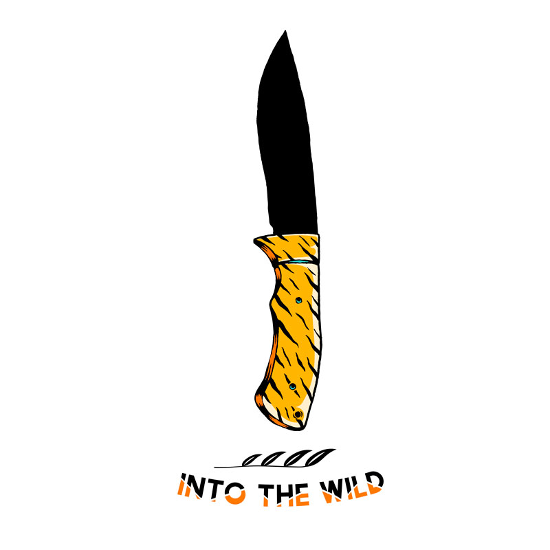 I had a two-hour conversation with two grade 11 students about patriarchy and John Krakauer's Into the Wild and the films of Richard Linklater.